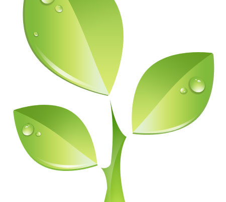 green-plant-vector